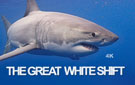 Great White Shift